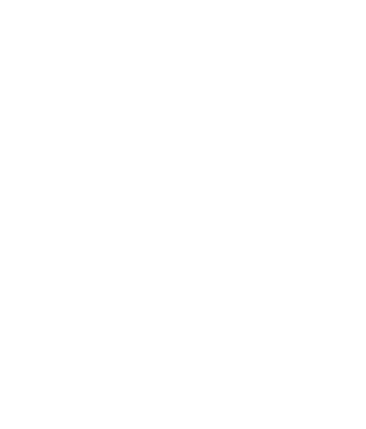 amereno-logo